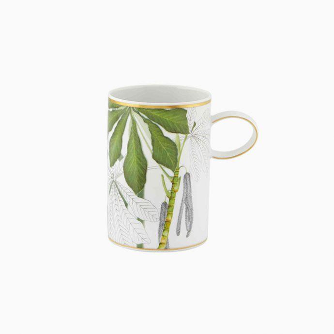 Mug (Set of 4) - Amazōnia