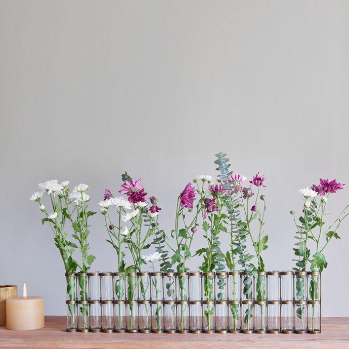 Test Tube Vase -  X12