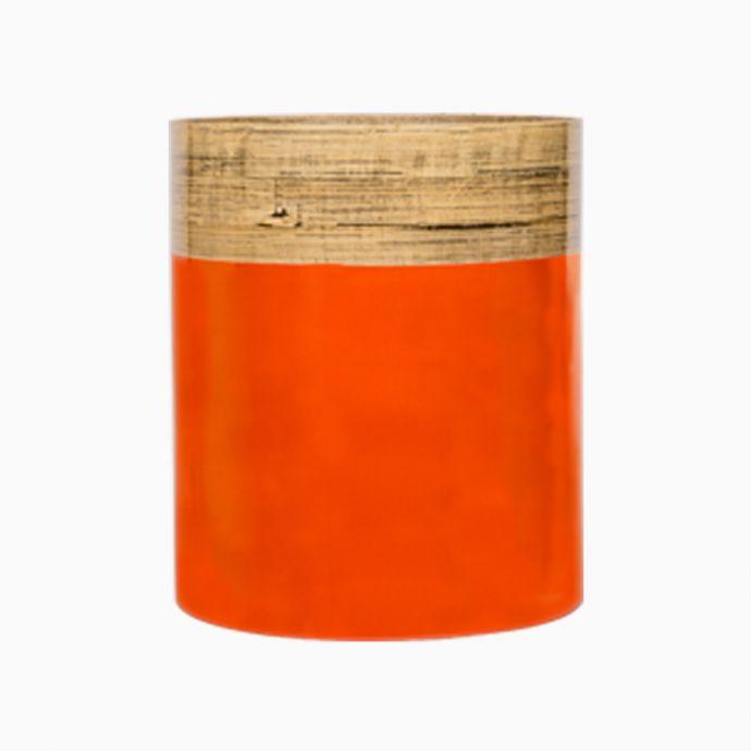 Orange Bamboo Plantin