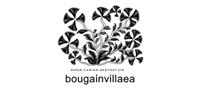 Bougainvillaea